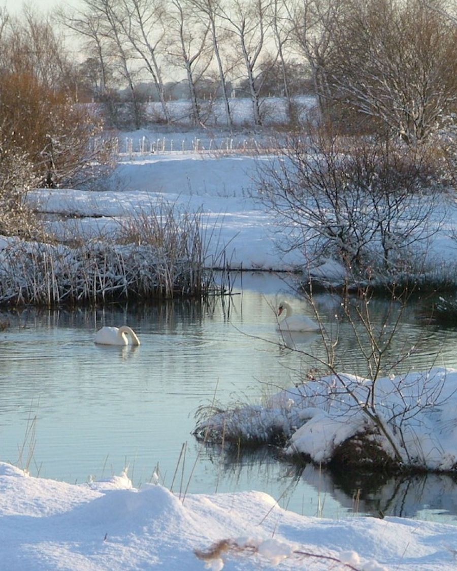 conservation-area-beautiful-even-in-winter